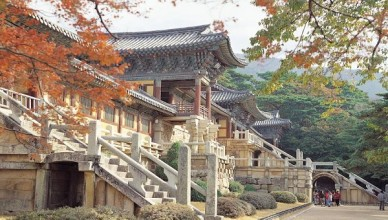 South Korea Tours with Magical Korea Blog