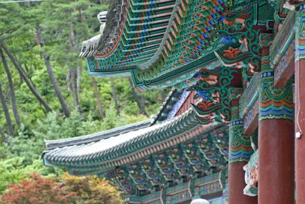 Visit Korea with Magical Korea tour operator
